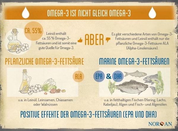NORSAN_Infografik_Leinoel_DE_20200417_600x440px.jpg